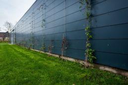 Grønne vægge Solrød