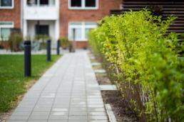 Herlevgårdsvej udenomsarealer renovering af udenomsarealer